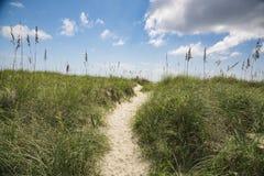 Gångbana för strandsanddyn Arkivbilder