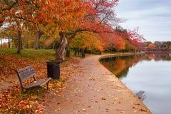 Gångbana för tidvattens- handfat för Autumn Washington DC Arkivbilder