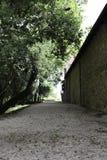 Gångbana i den Sardinia vingården Royaltyfria Bilder