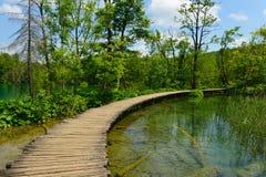 Gångbana i Plitvice sjönationalpark Fotografering för Bildbyråer