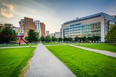 Gångbana och moderna byggnader, på det Massachusetts institutet av Fotografering för Bildbyråer