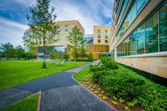 Gångbana och Tata Hall, på den Harvard Business skolan, i Boston, mor Royaltyfri Foto