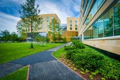 Gångbana och Tata Hall, på den Harvard Business skolan, i Boston, mor Royaltyfri Bild