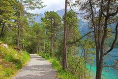 Gångbana på lakesiden av eibseen, närliggande garmisch, Tyskland fotografering för bildbyråer