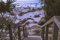 Gångbana på tropisk shoreline royaltyfria foton