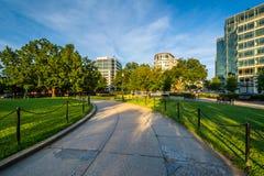 Gångbana på Washington Circle i Washington, DC Arkivfoton
