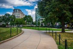 Gångbana på Washington Circle i Washington, DC Arkivbilder