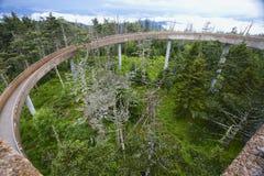 Gångbana till ön i himmelClingman'sens tornet GSMNP för kupol Arkivbilder