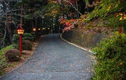 Gångbana till pagoden i Japan Arkivbilder