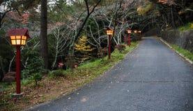 Gångbana till pagoden i Japan Royaltyfria Foton