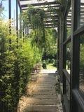 Gångbana under glasvägg- och växtpanel till trädgården på bet Arkivfoton