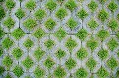Gångbanacement för bästa sikt, gräsmodell för hem Arkivfoto