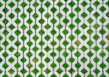 Gångbanacementtegelsten med grönt gräs Fotografering för Bildbyråer