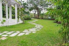 Gångbanasikt, botanisk trädgård Arkivfoton