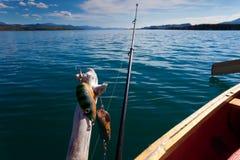 gånget begreppsfiske Royaltyfri Bild