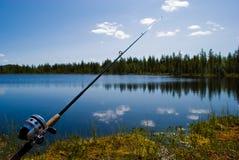 gånget fiska Royaltyfri Fotografi