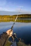 gånget fiska Fotografering för Bildbyråer