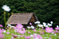 går arvshirakawavärlden Royaltyfri Fotografi