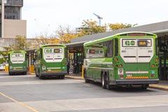 GÅR bussar i Toronto, Kanada Fotografering för Bildbyråer