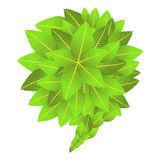 Går den gröna sociala marknadsföringsaktionen Arkivfoton