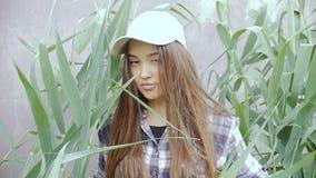 Går driftigt gräs för den unga kvinnan med hennes händer, till kameran stock video