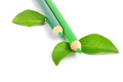 går green arkivfoton