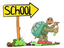 går skolan till sköldpaddan Arkivbild
