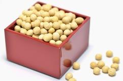 går soybeans för mått ett Royaltyfri Fotografi