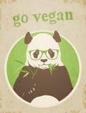 Går strikt vegetarian Panda Bear Arkivfoto
