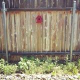 gård för white för USA för hus för tillbaka färg för fågel blå hängande röd Arkivbild