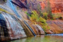 Gåta faller Zion National Park Utah Royaltyfri Fotografi