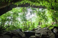 Gåtagrotta i tropisk skog, frodig ormbunke, mossa och lav på stenväggen av grottan Vattenfärgstänk med tropiska träd in royaltyfri bild