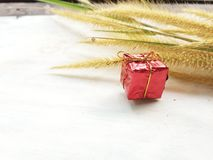 Gåvaask från naturen och blommor fotografering för bildbyråer