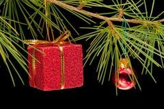 gåvan för baubleaskfilialen sörjer red Fotografering för Bildbyråer