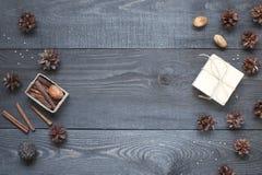 Gåvan kort, sörjer kottar och cinnamonin Royaltyfri Fotografi