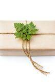 Gåvapacke som slås in med papper och repet med ett blad Royaltyfri Bild