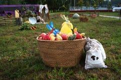 Gåvor av hösten på grönt gräs i den vide- korgen Royaltyfri Foto