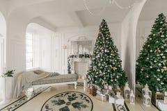 Gåvor på julgranen julskogen knurled morgon som snöig trails övervintrar wide klassiska lyxiga lägenheter med en vit spis, soffa, Royaltyfria Bilder