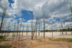Géiser de Yellowstone imagenes de archivo