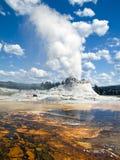 Géiser del castillo, parque nacional de Yellowstone, Wyoming Foto de archivo