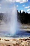 Géiser en el parque nacional de Yellowstone Imagenes de archivo
