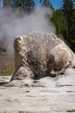 Géiser en Yellowstone Fotos de archivo libres de regalías