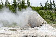 Géiser en Yellowstone Imagenes de archivo