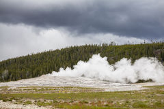 Géiser fiel viejo en el parque nacional de Yellowstone Imagenes de archivo