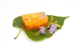 Gélatine thaïe de dessert de type avec l'oeuf Photos stock