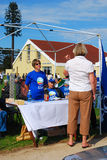 général 2009 d'élections de l'Afrique du sud Images libres de droits