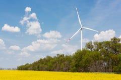 Générateur de vent et gisement de floraison de canola, le concept de l'énergie renouvelable propre, contre un ciel bleu image libre de droits
