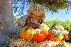 Générosité d'automne photographie stock