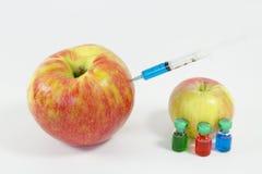 Génétiquement modifié Images stock