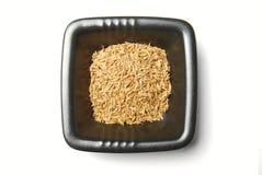 Gérmenes de comino en un tazón de fuente Fotografía de archivo libre de regalías